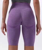 Sommer Fitness High Waist Plain Yoga Shorts