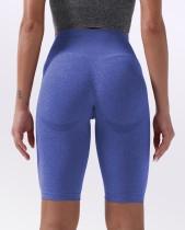 Sommer Fitness High Waist Plain Yoga Shorts