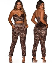 Party Sexy Leopard Trägerloses Crop Top und Hosen Set
