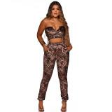 Party Sexy Leopard Trägerloses Crop Top und Hosen Set