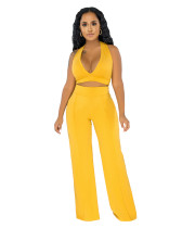 Summer Party Solid Color Halter Crop Top and High Waist Pants Set