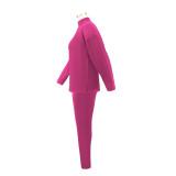 Plus Size Herbst Casual Solid Plain Hemd und Hosen Set