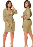 Autumn Party Solid Plain Plunging Dress