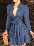Robe patineuse bleue transparente d'automne avec ceinture