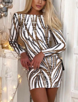 Winter Party Pailletten Mini O-Neck Kleid