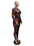 Party Sexy Mesh Patch Floral Bodycon Mono con mangas completas