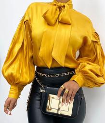 Camicetta elegante legata con maniche a sbuffo stile vintage