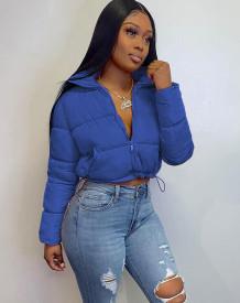 Winter Long Sleeve Zipped Short Down Jacket