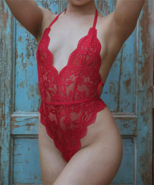 Sexy hoog uitgesneden teddy-lingerie met diepe V-hals