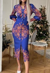 Bahar Resmi Retro Baskı Ön Yarık Uzun Kollu Midi Elbise