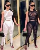 Top corto e pantaloni aderenti sexy trasparenti in maglia nera estiva