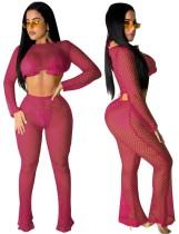 Summer Pink Fishnet Crop Top y Pantalones 2PC Cover-Ups
