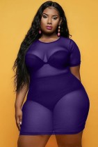 Summer Plus Size Viola See Through Mesh Bodycon Dress