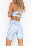 Summer Sports Leopard Yoga Bra and Shorts 2PC Set