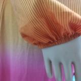 Sommer Multicolor Elegantes Langarm Crop Top und langer Rock 2PC SetPC