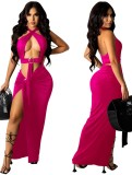 Summer Pink Sexy O-Ring Halter Crop Top y Conjunto de falda larga irregular