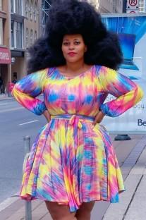 Autumn Plus Size Long Sleeve Multicolor Skater Dress