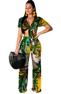 Summer Print Knotted Crop Top and Pants Holiday 2PC Set