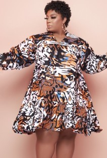 Autumn Plus Size Print Casual Skater Dress
