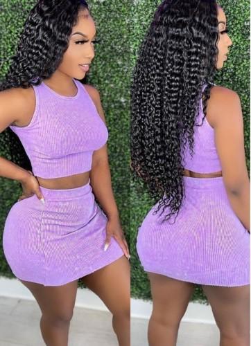 Summer Knit Vest Crop Top y Minifalda Conjunto de 2 piezas