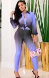 Herbst Gradient Lila Langarm Bluse und Skinny Pants Set