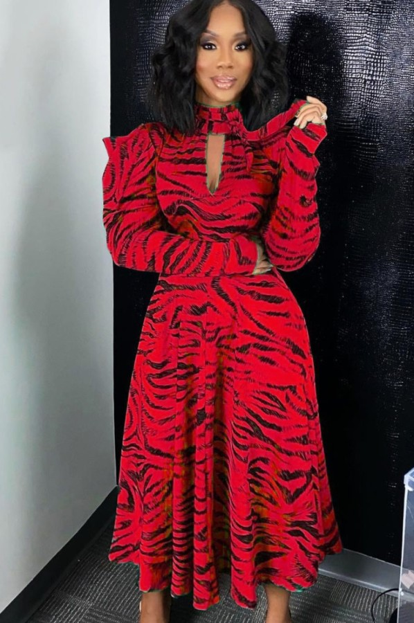 Herbst Rot Tiger Streifen Stehkragen Aushöhlen Volle Ärmel A-Linie Langes Kleid