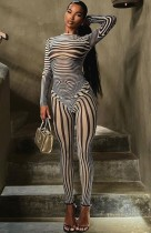 Fall Sexy See Through Zebra Top and Pants Set