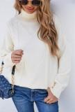 Winter White Turndown Kragen Regular Pullover Pullover