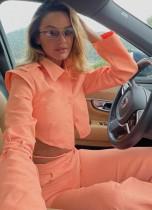 Fall Pink Sexy Crop Top and Pants Set