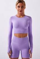 Fall Purple Sports Crop Top and High Waist Shorts Yoga Set
