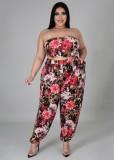 Conjunto de pantalón y top corto de tubo floral de talla grande de otoño con cárdigan