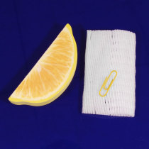 Creative lemon Fruit Pocket Memo Pad Note Paper