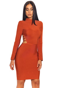 Lace up Back Detail Long Sleeve Bandage Dress