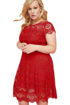 Red Plus Size Back Cutout Lace Fit Flare Dress