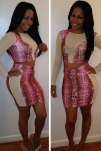 Rosy Snakeskin High Waist Skirt Set