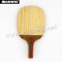 Sanwei STORM R3