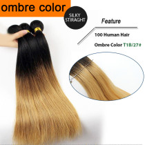 OMBRE HAIR STRAIGHT T1B/27#