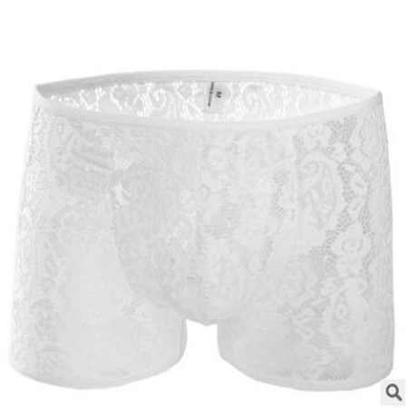 Men's Sexy Lace Underwear Semi-see through Low Rise Boxer Brief