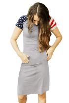 Closecret Gray Patriotic Tee Dress