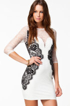 White Long Sleeve Vintage Lace Bodycon Dress