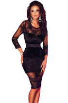 Black Lace Mesh Insert Sleeved Peplum Dress