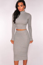Grey Ribbed Knit Turtleneck Two Piece Dress