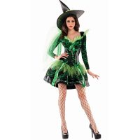 Wicked Emerald Witch Shaper Costume 1009