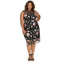 Plus Size Embroidered Floral Mesh Front Dress