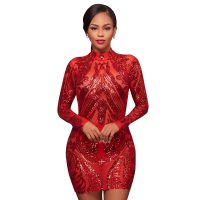 Aurora Red Nude Illusion High-Neck Dress