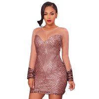 Celeste Bronze Sequins Nude Mesh Dress
