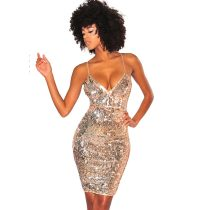 Champagne Silver Reversible Sequins Spaghetti Straps Knee Length Dress