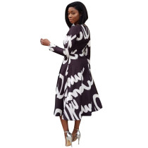Print Long Skater Swing Dress