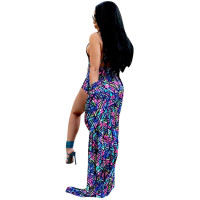 Print Halter One Piece & Cover-Up Cloak
