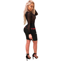 Mesh Upper Black Sexy Club Dress